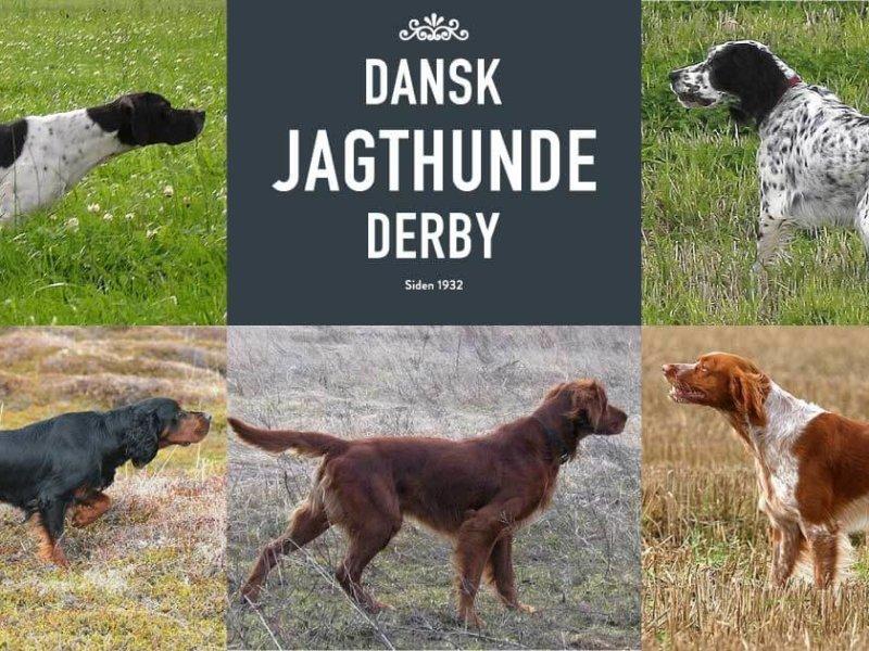 Derby logo og de 5 engelske racer