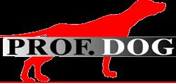 Hovedsponsor Prof. Dog